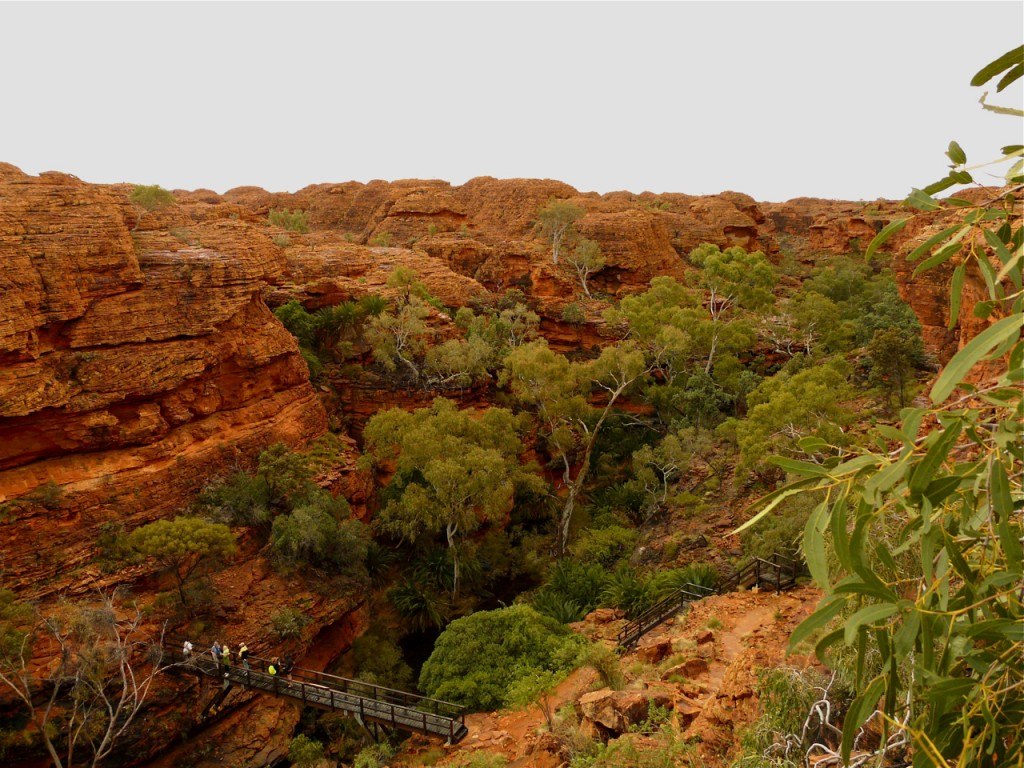 Kings Canyon mit Regen